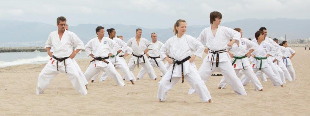 Shotokan Karate-do